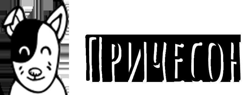 Причесон